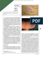 anatomia quirurgica uña.pdf