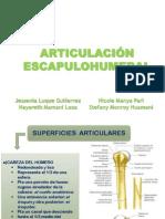 SEMINARIO ANATOMIA FINAL.pdf