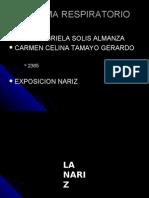 Expo Nariz