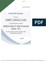EN00E20_Module 20_SIS Part I.pdf