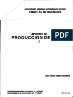 Apuntes de Producción de Pozos i