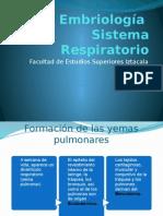 Embriología Sistema Respiratorio