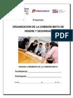 02 Organización de la comisión mixta de Higiene y seguridad – Karol Ochoa.pdf