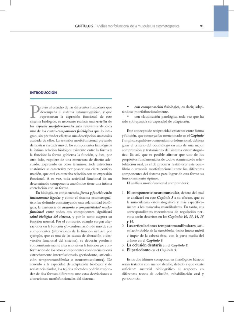 Fantástico Capítulo 10 Sistema Muscular Anatomía Macroscópica ...