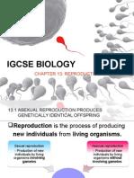 IGCSE BIOLOGY REPRODUCTION.pptx