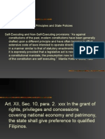 Declaration of Principles (1).ppt