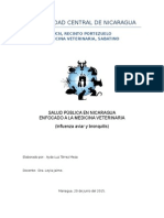 Salud Publica Trabajo Final Jul2015