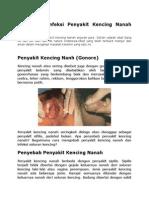 Treatment Infeksi Penyakit Kencing Nanah Dokter
