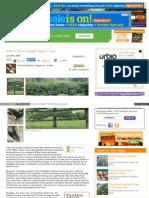 Www Vegetablegardener Com Item 2453 How to Grow Espalier App