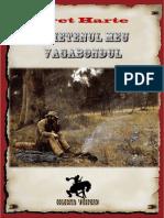Bret Harte - Prietenul meu vagabondul.pdf