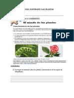 Ciencias Naturales Las Plantas 2015