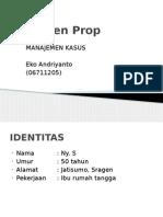 168887308-Serumen-Prop