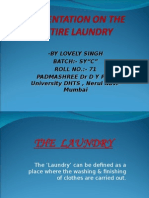 presentationontheentirelaundry1-120419081317-phpapp02.ppt
