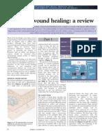 Corneal Wound Healing