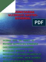 ulcerul gastric si duodenal- etiopatogenia