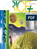 27th August,2015 Daily Exclusive ORYZA Rice E-Newsletter by Riceplus Magazine