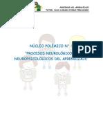 NÚCLEO POLÉMICO N°. 1 Procesos neurologicos