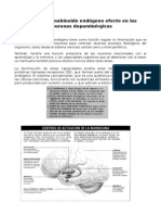Sistema Cannabinoide Endógeno Efecto en Las Neuronas Dopaminérgicas