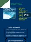 Ecosistema y Biomas Ciclos Biogeoqcos