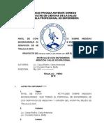Py Bioseguridad Correccion