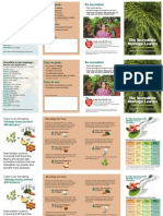 Moringa Brochure 2up a4
