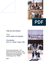 Tese Carla coelho de andrade.pdf