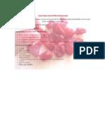 manual_fruta_enchilada.pdf