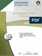 pratica de laborayório_visualização células em mitose.pdf