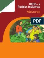 REDD+ y Pueblos Indígenas