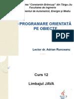 curs12-POO(2013)