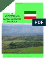 Campoalegre (Huila)