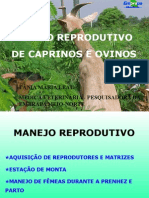 Manejo Reprodutivo de Caprino, Embrapa
