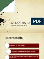4. Norma Juridica