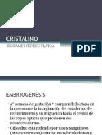 presentación cristalino