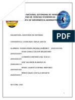 Auditoria - Aeronautica Civil (1)