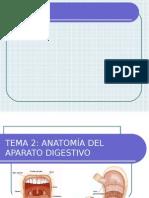 aparato_digestivo.ppt