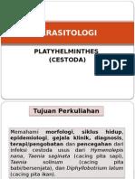 Parasitologi Plathyhelminthes Cestoda - Andareas
