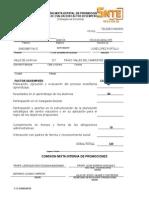 Fichas de Evaluacion Com. Interna