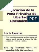 Viviana García Sierra - Ejecución Penal - 1er_Encuentro Ejecucion Final