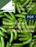 Buenas Practicas Agricolas.pdf