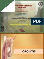 Orquitis y Epididimitis