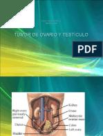 Tumor de Ovario y Testiculo