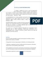 1.3 Dimensiones de La Sustentabilidad Infoooo