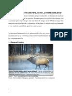 PRINCIPIOS FUNDAMENTALES DE LA SOSTENIBILIDAD