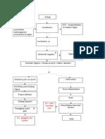pathway vaginosis bakterialis