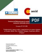 TdR Evaluación externa Convenio AECID
