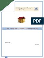 Evaluation Des Immobilisations Incorporelles (4)