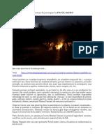 Instructuni de Participare La FOCUL SACRU(1)