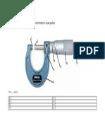 Fig MicroMetro