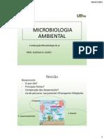 Aula 12_Microbiologia Do Ar_Parte2
